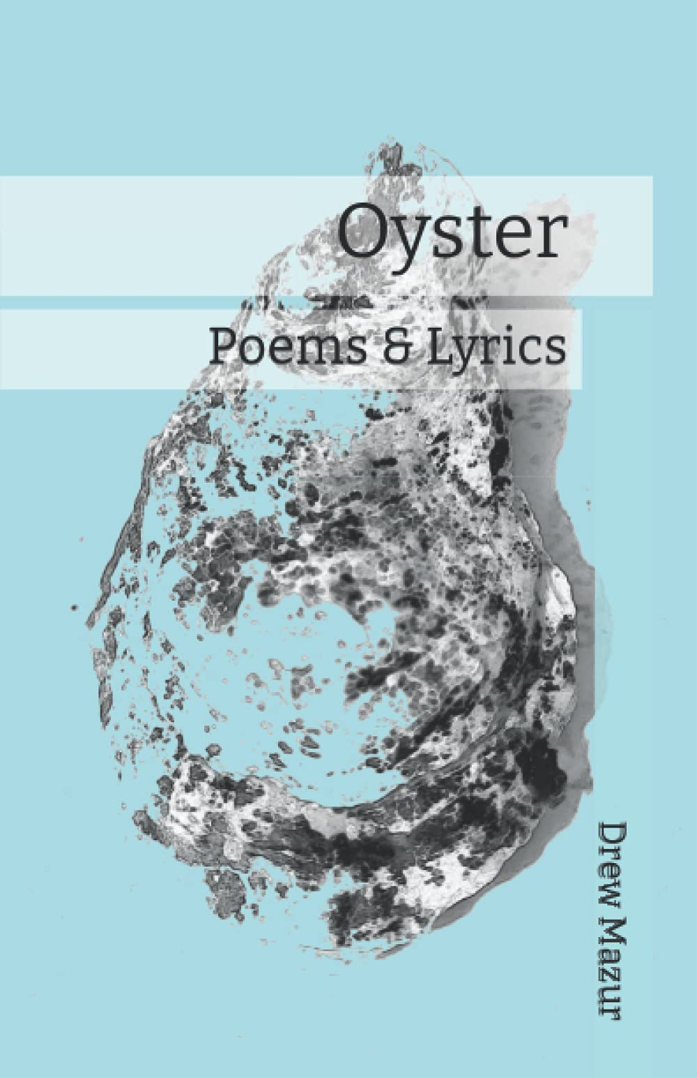 Oyster cover